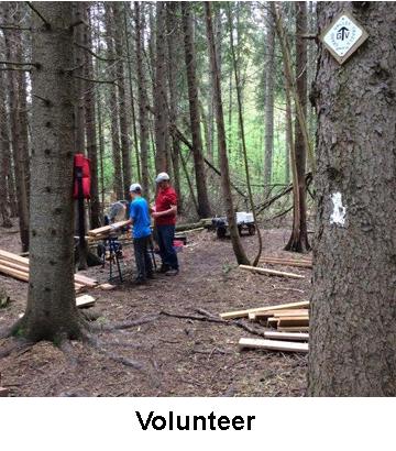 people with lumber building a bridge for trail